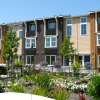 150-Townhomes_Design-&-Build_Sunnyvale-CA